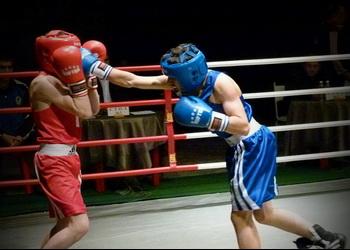 Особенности ставок на бокс в букмекерских конторах