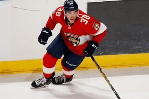Лада пригласила нападающего, игравшего в прошлом сезоне в НХЛ
