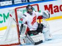 Континентальная Хоккейная Лига. Адмирал – Авангард, прогноз на 22.01.19