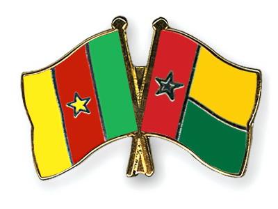 КАН-2019. Камерун – Гвинея-Бисау. Анонс и прогноз на матч 25.06.19